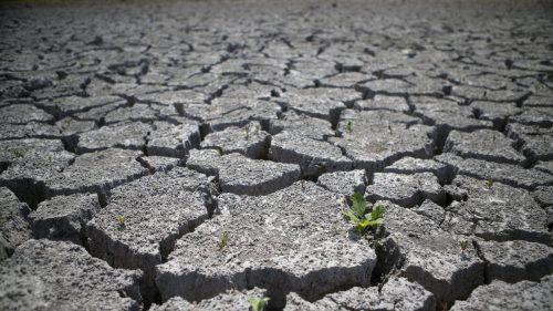 Canicule et sécheresse en France : vers une augmentation des risques d'inondations ?